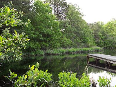 fells pond village in New Seabury