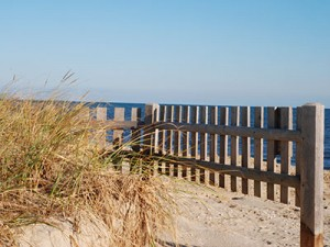Beach Fence on New Seabury Beach